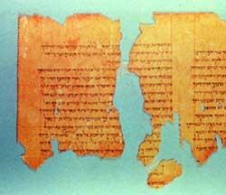 Qumran Temple Scroll